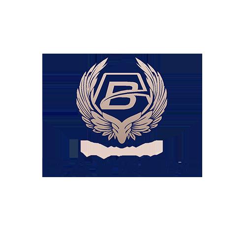 BAYSIDE-WINGS2